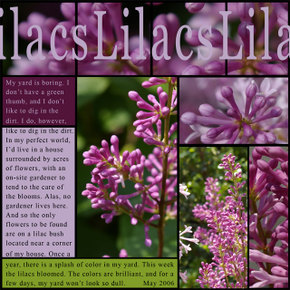 Lilacsleftcopy